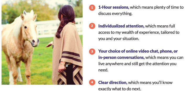 Four 75-minute sessions, which means plenty of time to discuss everything. Individualized attention, which means full access to my wealth of experience. Your choice of Skype, phone, or in-person conversations, which means you can live anywhere and still get the attention you need. Clear direction, which means you'll know exactly what to do next.